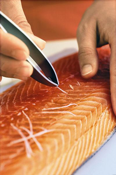 Kuhmen.ru Пинцет для удаления костей из рыбы
